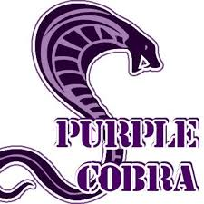 Purple_cobra_icon.jpg